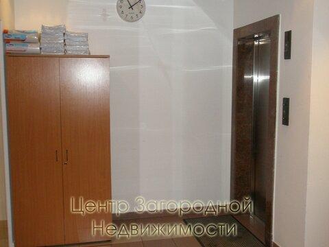 Аренда офиса в Москве, Цветной бульвар, 152 кв.м, класс B. м. . - Фото 2