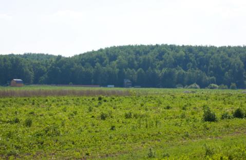 Продам участок 6,4сот (ИЖС) тиз солнечный остров - Фото 3