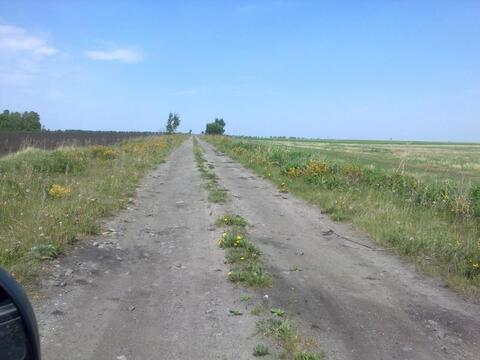 Участок 12 Га в Белоярском районе Свердловской области - Фото 4