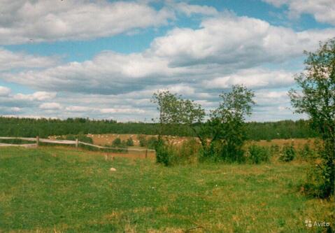 Красное Село - д. Переярово - Фото 3