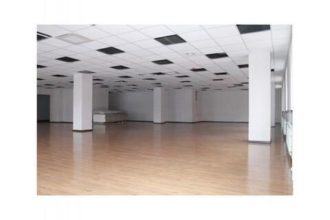 Сдается Офисное помещение 244м2 Преображенская площадь - Фото 4