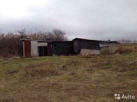 Дом в п. Яковлево, все удобства в доме, беседка, хоз.постройки, сад - Фото 5