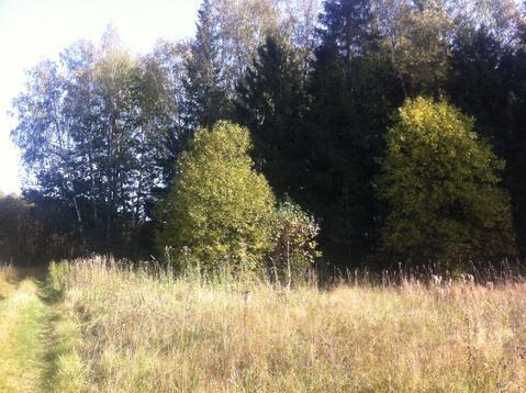 Земельный участок на опушке леса - Фото 1