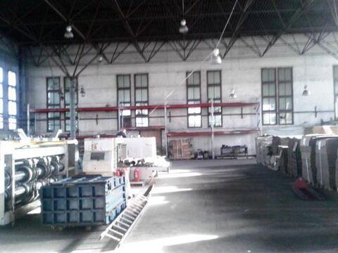 Сдам производственное помещение 930 кв.м, м. Ладожская - Фото 4
