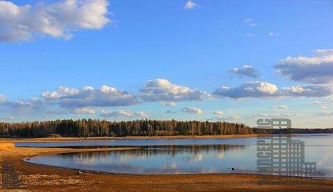 Участок 880 соток на первой линии Истринского водохранилища в лесу - Фото 1