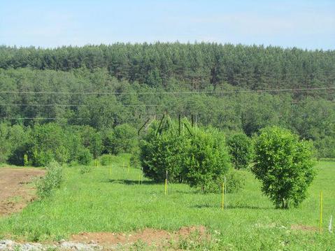 Продается участок, Новорижское шоссе, 15 км от МКАД - Фото 1