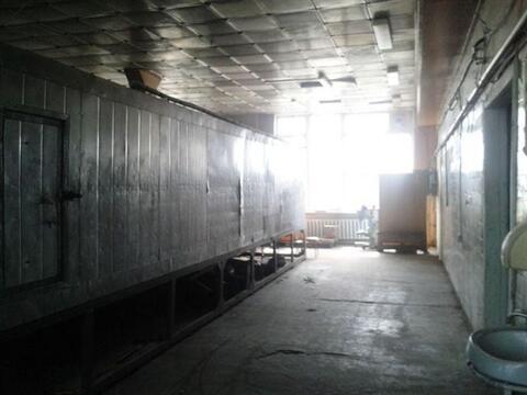 Сдам складское помещение 580 кв.м, м. Проспект Ветеранов - Фото 1