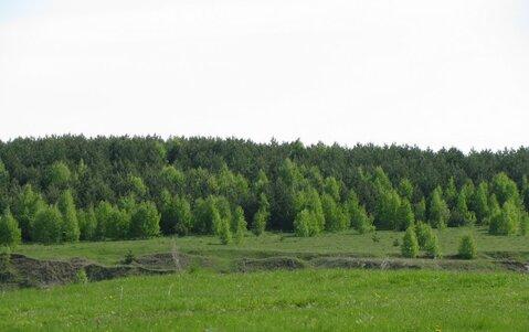 10 мин от склонов Игоры, д.Иваново - Фото 2