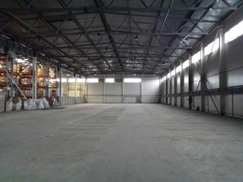 Сдам складское помещение 2443 кв.м, м. Бухарестская - Фото 1