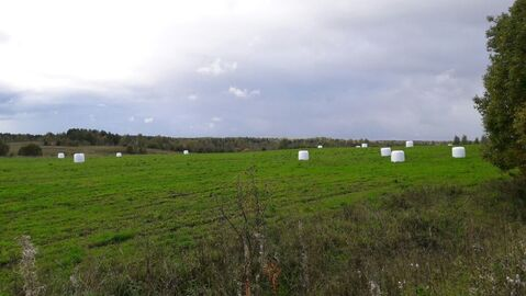 Продажа сельхоз производства 2732 кв. м - Фото 2