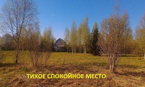 Участок ИЖС 15 соток плюс 6 соток в аренду Ленинградская область . - Фото 2