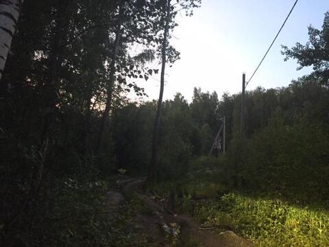 Участок 16 соток, ИЖС, д. Тюфанка Чеховский р-н. Леные деревья - Фото 1