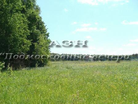 Симферопольское ш. 47 км от МКАД, Леониха, Участок 20 сот. - Фото 2