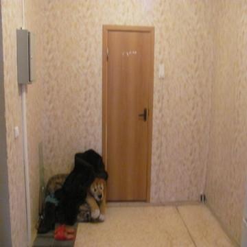 3 квартира ул.Земская д.17 - Фото 5
