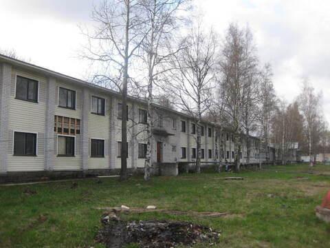Сдается здание, 2500м2, отдельно стоящего здание в парке, Красное Сел - Фото 1