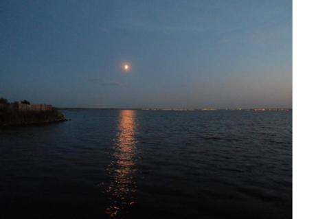 Участок ИЖС Ленинский с выходом на озеро - Фото 1