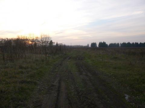 Участок 19 соток под строительство дома с пропиской в д. Молоствово - Фото 3