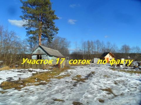 """Вырица, дом на берегу реки """"Оредеж"""" - Фото 3"""