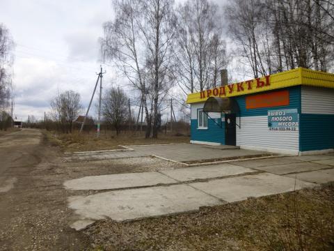 Земля 8 сот д. Полушкино - Фото 1