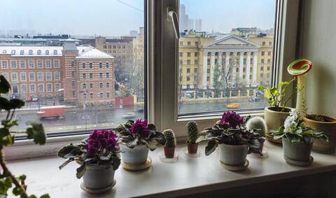 Квартира на Ленинградском! - Фото 2