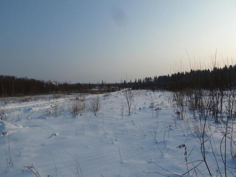 Участок 30 сот. , Минское ш, 79 км. от МКАД. - Фото 1