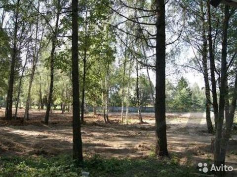 Наро-Фоминск, земельный участок 12 соток - Фото 1