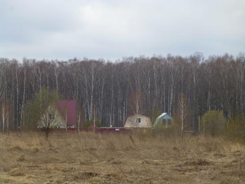 Земля 8 сот д. Полушкино - Фото 3
