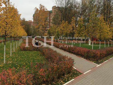 Торговая площадь, Ивантеевка, ул Школьная, 5 - Фото 4