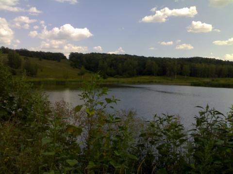 Участок с большим прудом для базы отдыха - Фото 2