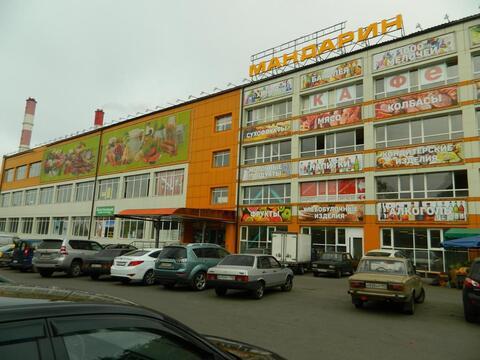 Продается псн в Сельскохозяйственном Центре Мандарин - Фото 2
