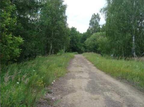 Продается земля 3824 соток, деревня Галкино - Фото 1