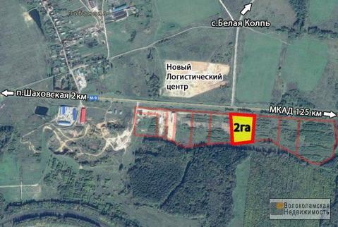 Участок 2 га на первой линии Новорижского шоссе