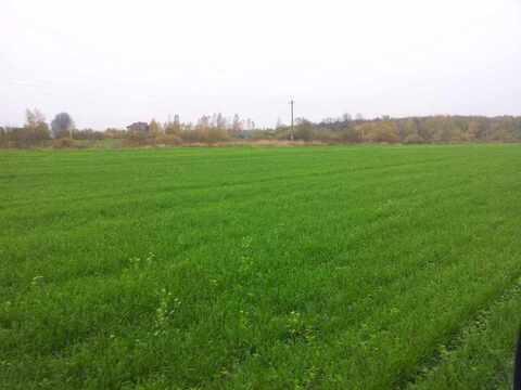 Продам: земельный участок 1000 соток - Фото 2