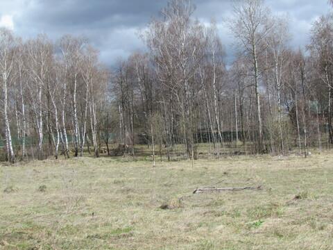 Продается участок 25 соток в жилой деревне Перхурово - Фото 5