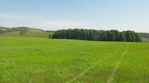 Земля в гектарах близ Аэропорта и с. Еловое 4га 4млн - Фото 1