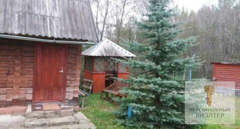 Дача со всеми атрибутами -баня лес озеро Беларусь - Фото 2