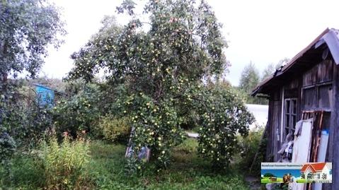 Участок 15 соток на Можайском водохранилище, д. Красновидово. - Фото 3