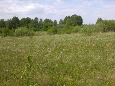 Участок 12 Га в Белоярском районе Свердловской области - Фото 3