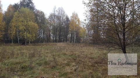 Участок 24 сотки на опушке в деревне Старокурово Ступинский район - Фото 5