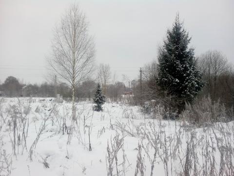 Продается земельный участок в с. Толбухино - Фото 5