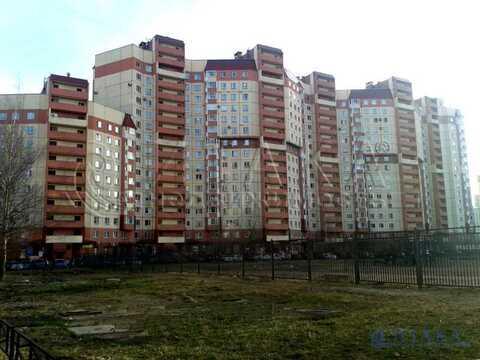 Продажа псн, м. Старая Деревня, Ул. Савушкина - Фото 4