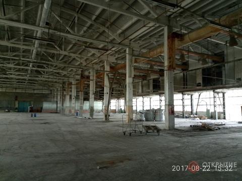 Под производство/склад (5000кв.м) - Фото 4