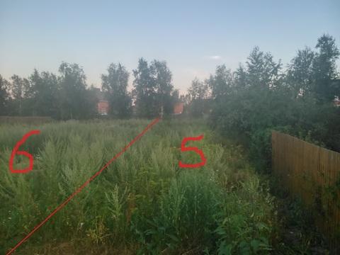 СНТ Елочки, вблизи п. Щапово, 5 и 6 соток - Фото 4