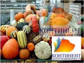 Продажа участка, Черемичкино, Топкинский район - Фото 5