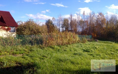 Продам садовый домик СНТ Пупышево - Фото 2