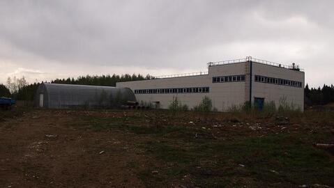 Завод для производства блоков в свх.Останкино 18 км от МКАД - Фото 1