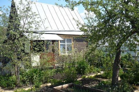 Продам сад на Широкой речке, Мичуринский - Фото 2