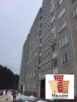 2к. Квартира ул. Рабочая д.101 - Фото 5