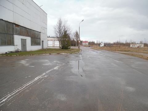 Тосно , Промышленная дом 5 - Фото 1