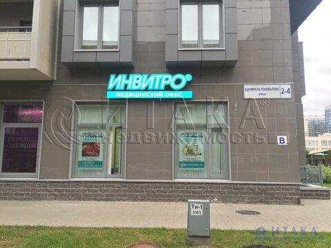 Продажа псн, м. Проспект Ветеранов, Адмирала Коновалова ул - Фото 3